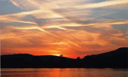 A sekély Duna lassítja a hajózást