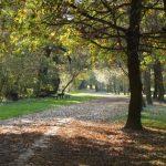 Kisoroszi ősszel is vár