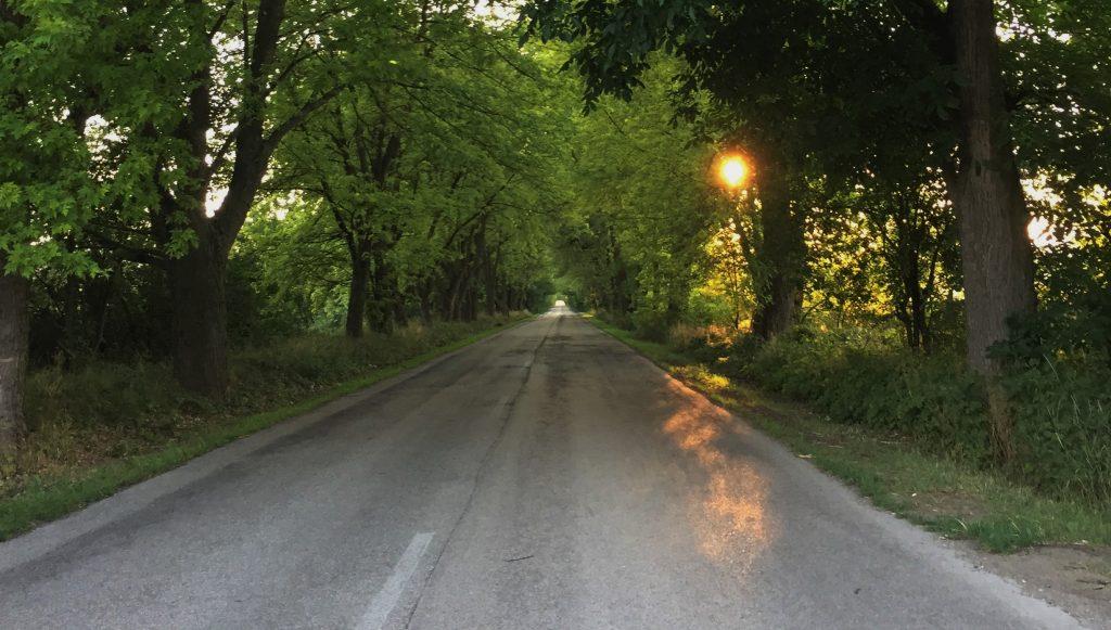 Kisoroszi út