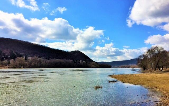 Kisoroszi Duna part