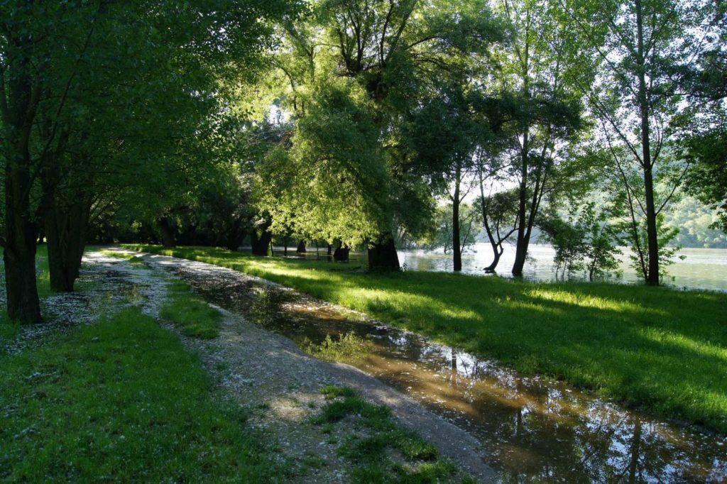 Tetőzik a Duna